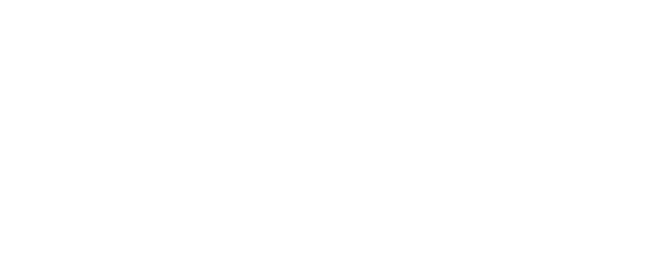 Delaney Property Inspections, LLC